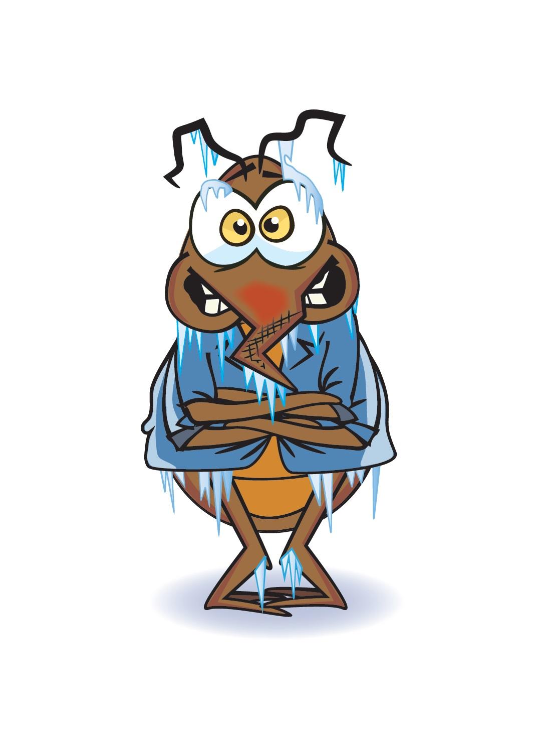 bedbug_image